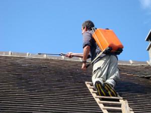 Traitement hydrofuge de toiture Armissan